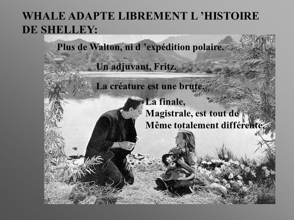 WHALE ADAPTE LIBREMENT L 'HISTOIRE DE SHELLEY: