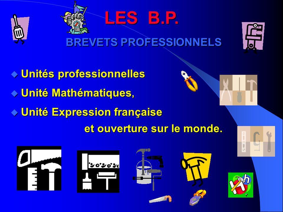 LES B.P. BREVETS PROFESSIONNELS