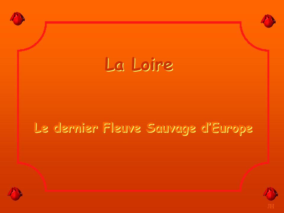 La Loire Le dernier Fleuve Sauvage d'Europe JH