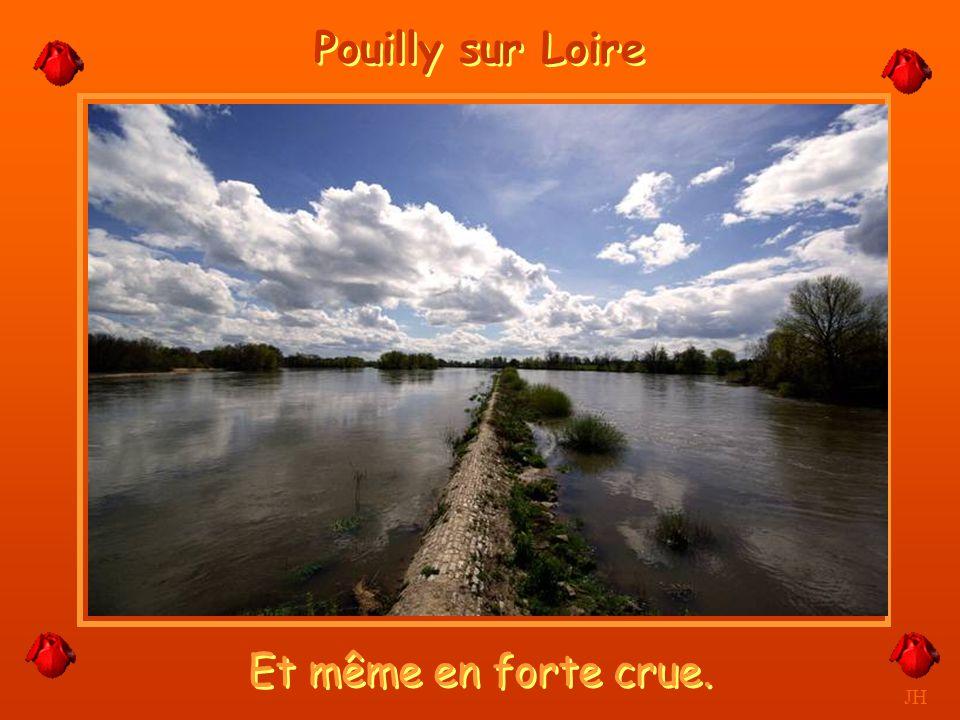Pouilly sur Loire Et même en forte crue. JH