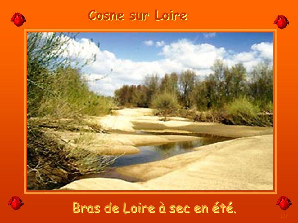 Bras de Loire à sec en été.