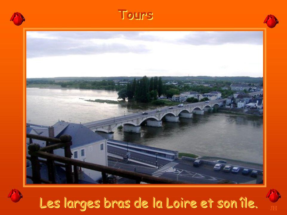 Les larges bras de la Loire et son île.