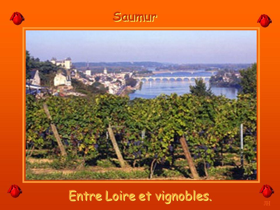 Entre Loire et vignobles.