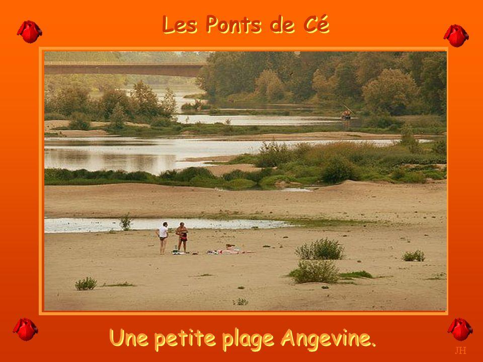 Une petite plage Angevine.