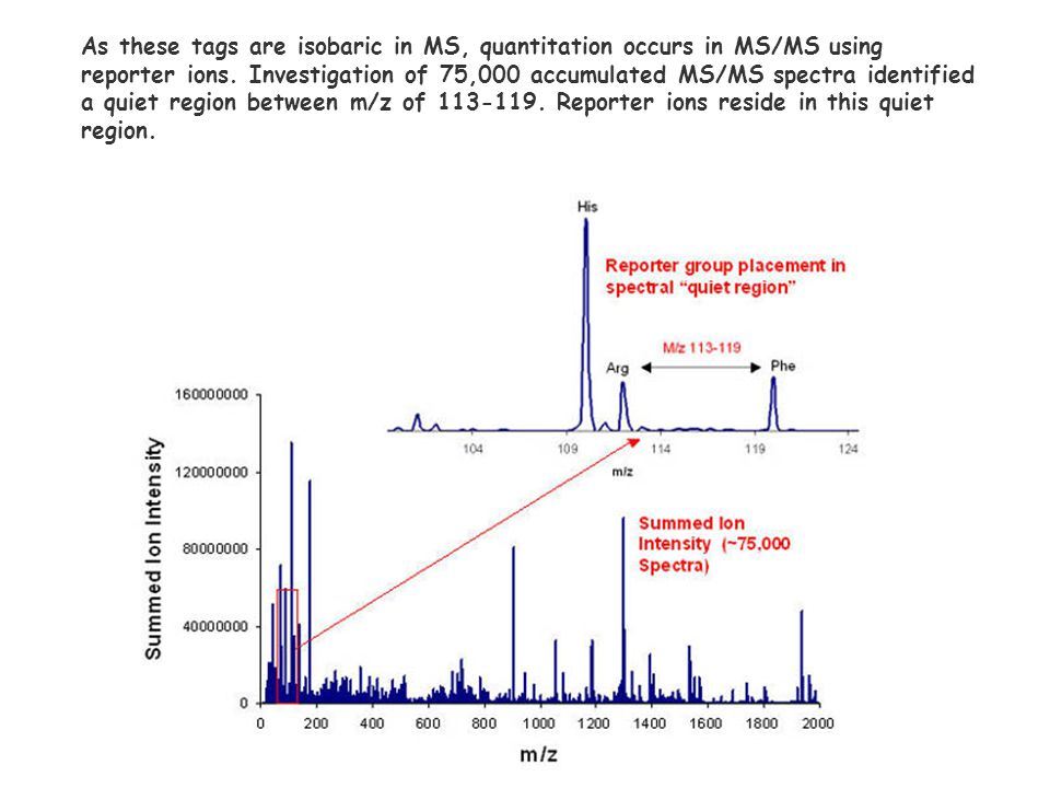 As these tags are isobaric in MS, quantitation occurs in MS/MS using reporter ions.