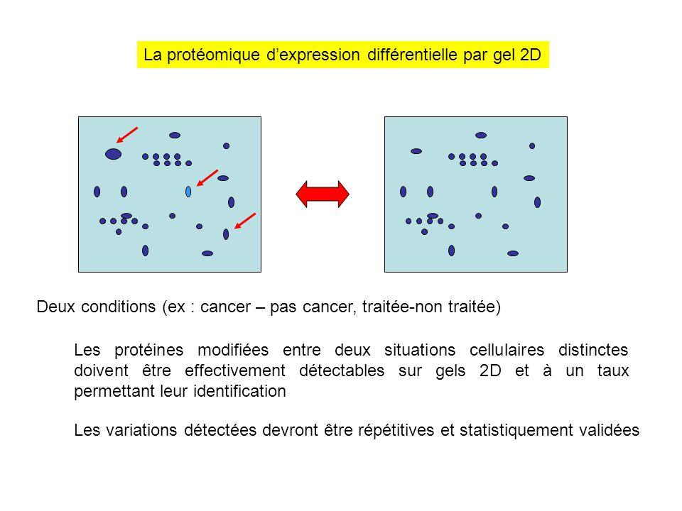 La protéomique d'expression différentielle par gel 2D