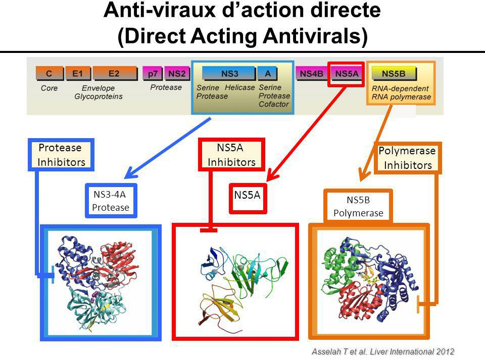 Anti-viraux d'action directe (Direct Acting Antivirals)