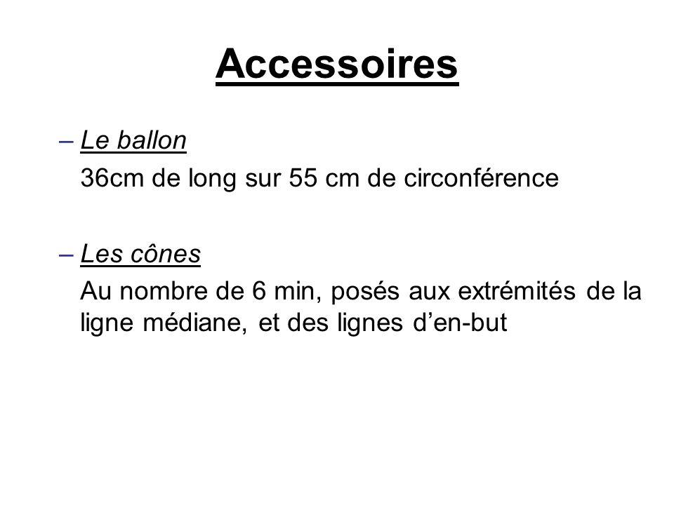 Accessoires Le ballon 36cm de long sur 55 cm de circonférence