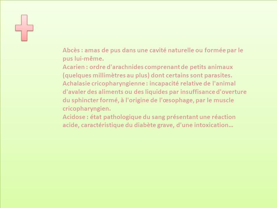 Abcès : amas de pus dans une cavité naturelle ou formée par le pus lui-même.