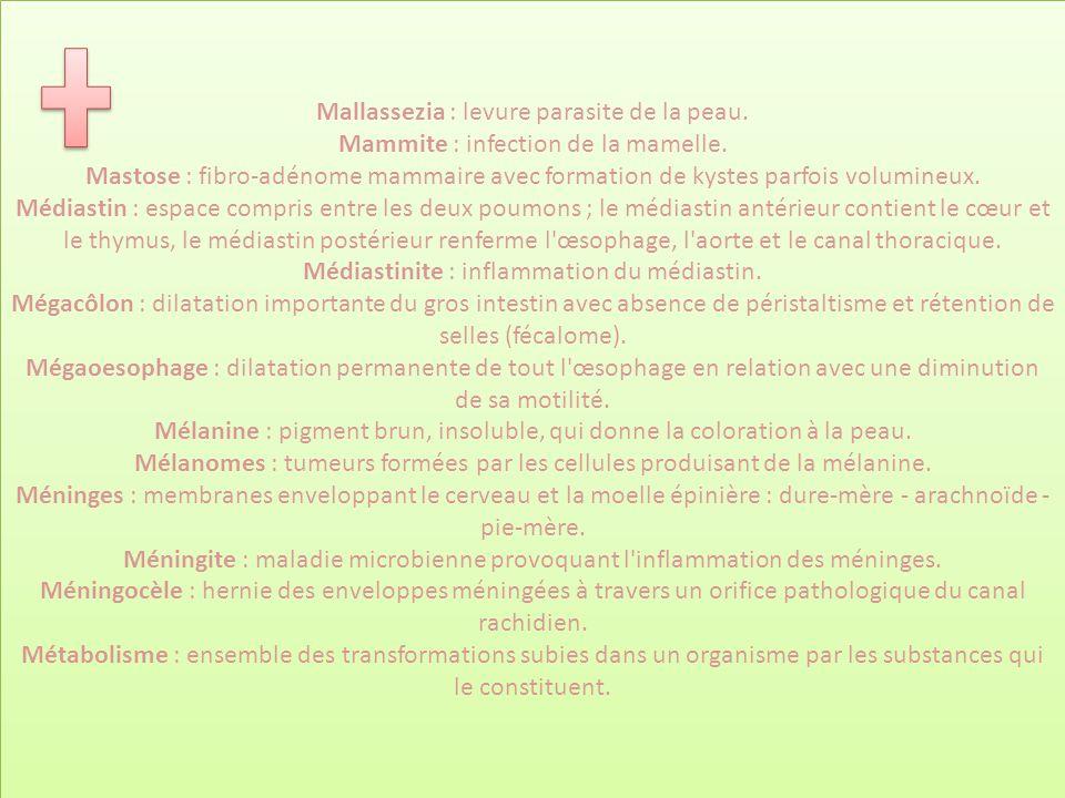 Mallassezia : levure parasite de la peau