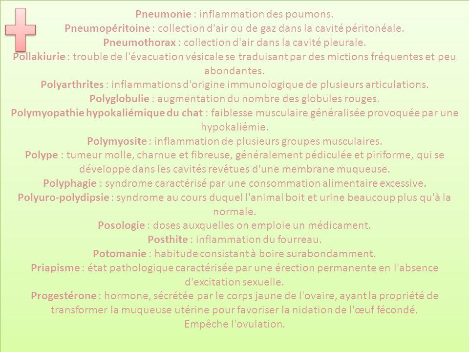 Pneumonie : inflammation des poumons