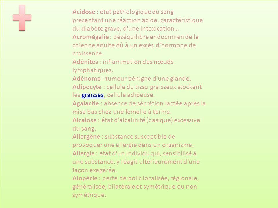 Acidose : état pathologique du sang présentant une réaction acide, caractéristique du diabète grave, d une intoxication… Acromégalie : déséquilibre endocrinien de la chienne adulte dû à un excès d hormone de croissance.