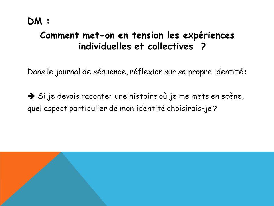 DM : Comment met-on en tension les expériences individuelles et collectives Dans le journal de séquence, réflexion sur sa propre identité :
