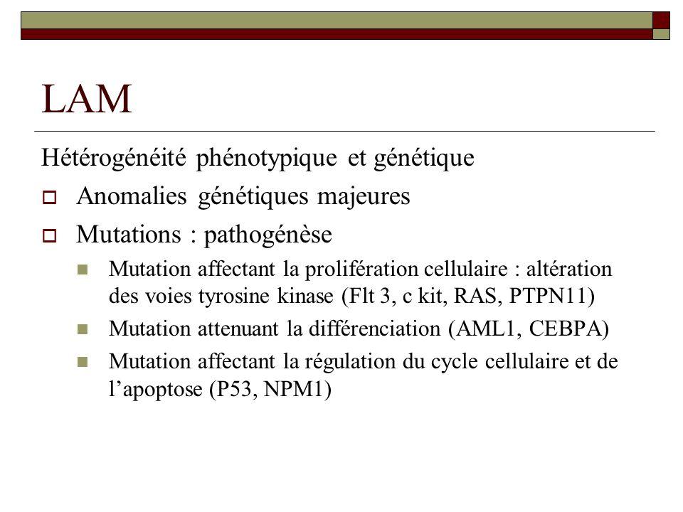 LAM Hétérogénéité phénotypique et génétique