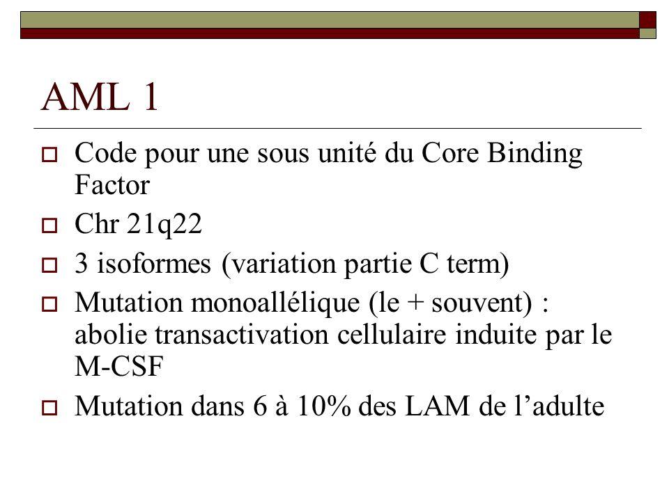 AML 1 Code pour une sous unité du Core Binding Factor Chr 21q22