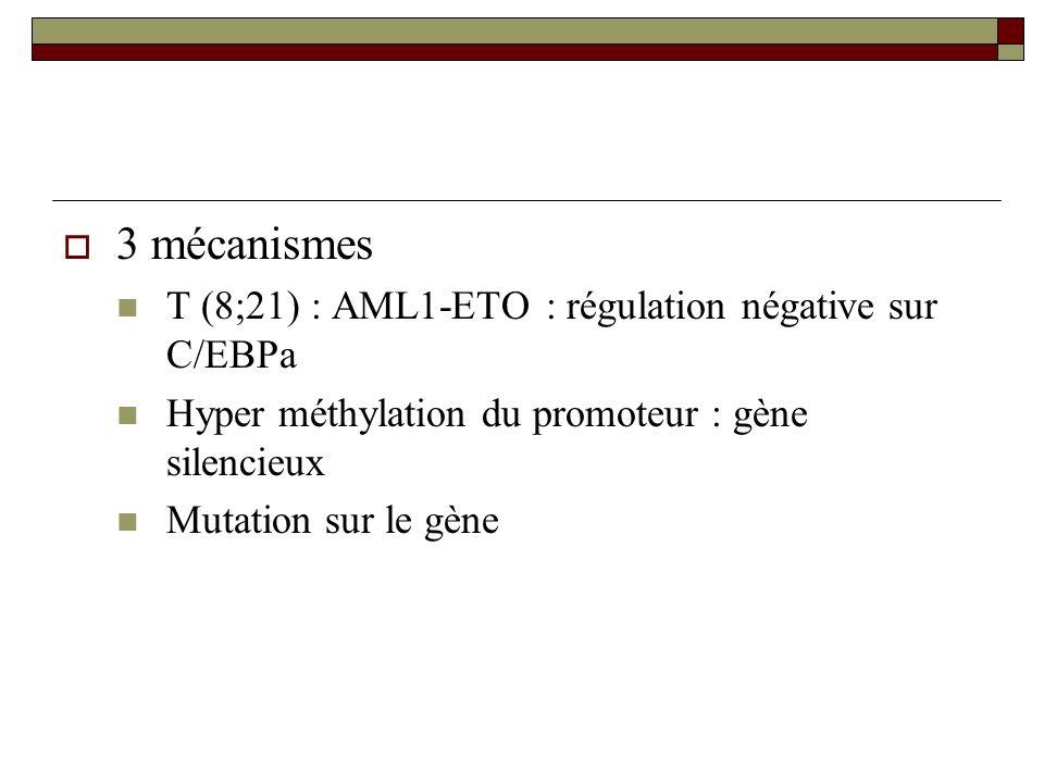 3 mécanismes T (8;21) : AML1-ETO : régulation négative sur C/EBPa