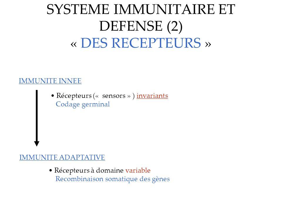 SYSTEME IMMUNITAIRE ET DEFENSE (2) « DES RECEPTEURS »
