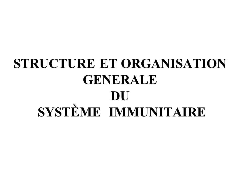 STRUCTURE ET ORGANISATION GENERALE DU SYSTème immunitaire