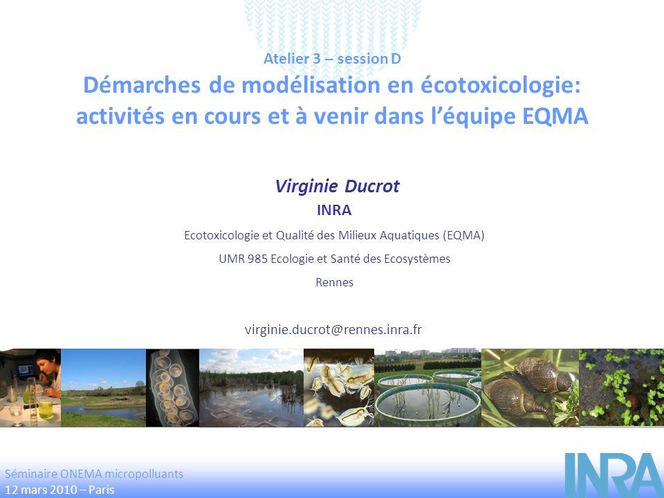 Démarches de modélisation en écotoxicologie: