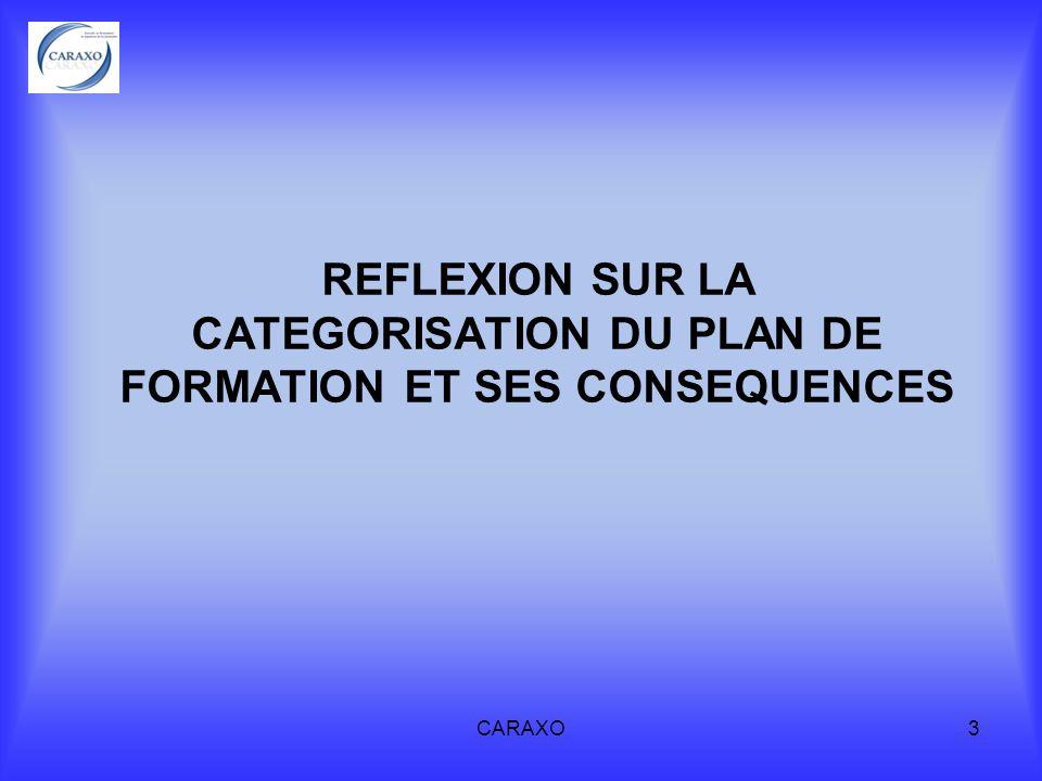 REFLEXION SUR LA CATEGORISATION DU PLAN DE FORMATION ET SES CONSEQUENCES