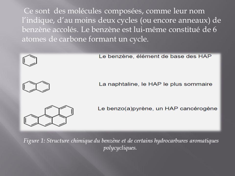 Ce sont des molécules composées, comme leur nom l'indique, d'au moins deux cycles (ou encore anneaux) de benzène accolés. Le benzène est lui-même constitué de 6 atomes de carbone formant un cycle.