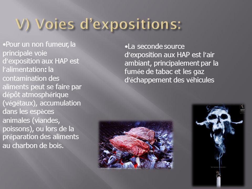 V) Voies d'expositions: