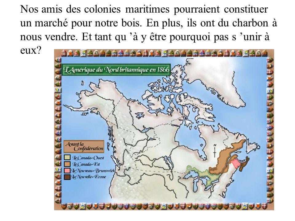 Nos amis des colonies maritimes pourraient constituer un marché pour notre bois.