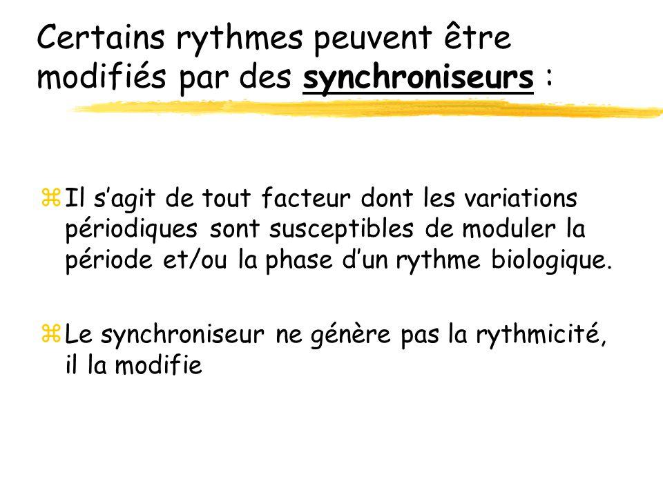 Certains rythmes peuvent être modifiés par des synchroniseurs :
