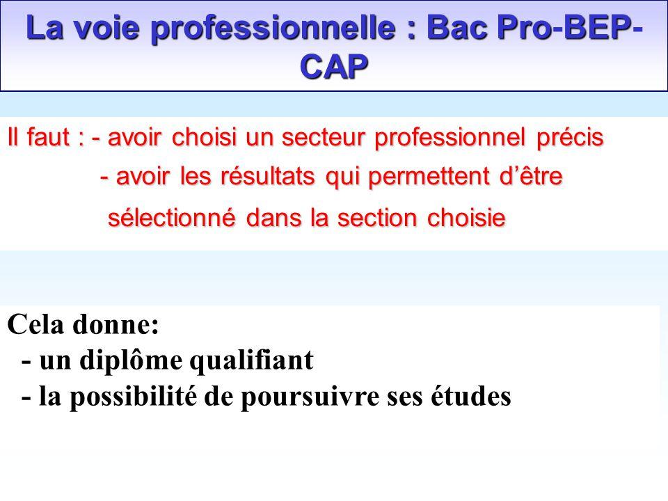 La voie professionnelle : Bac Pro-BEP-CAP