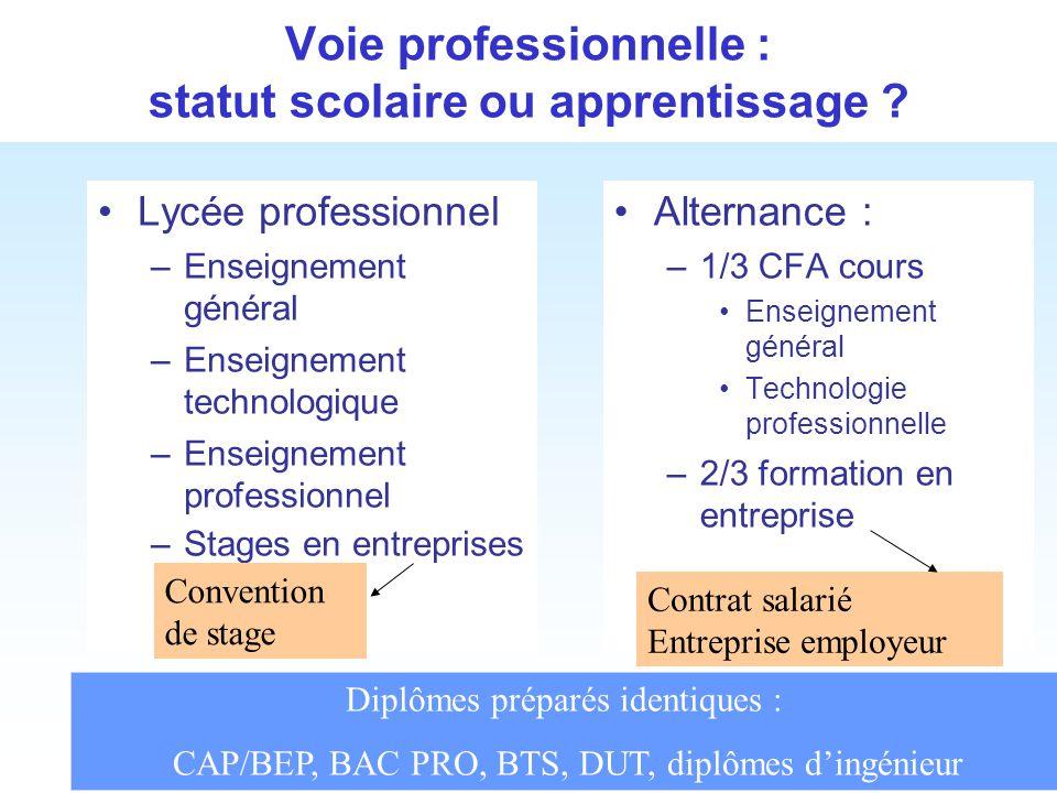 Voie professionnelle : statut scolaire ou apprentissage