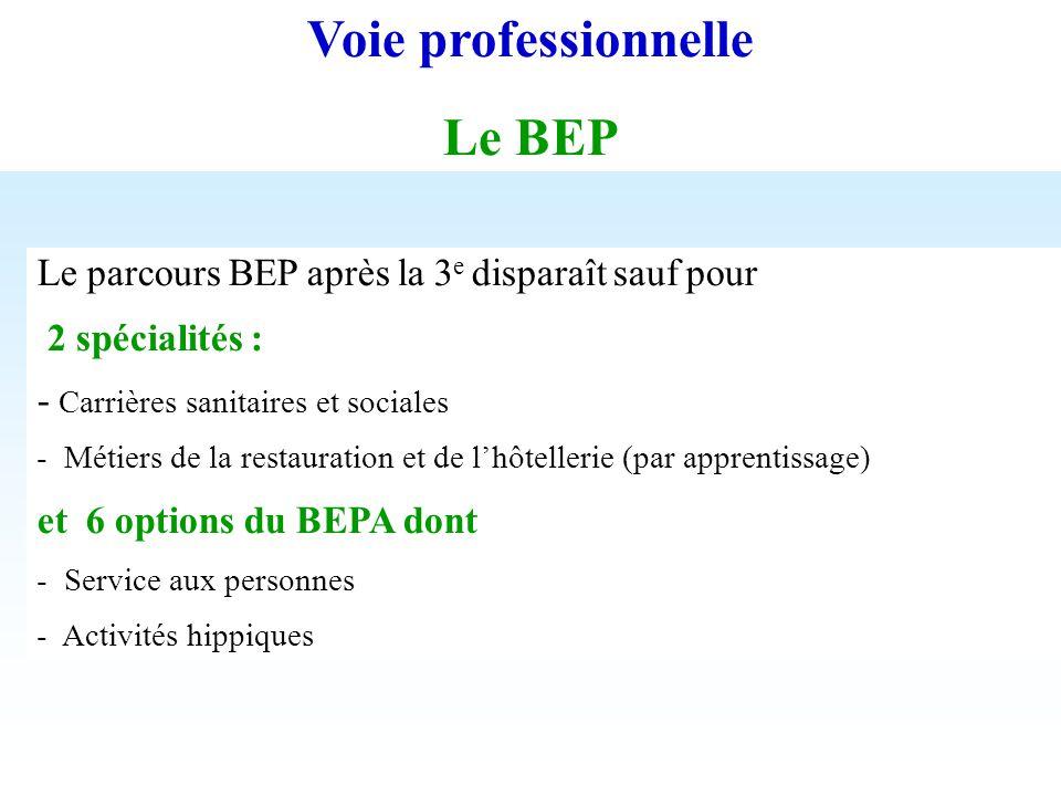 Voie professionnelle Le BEP