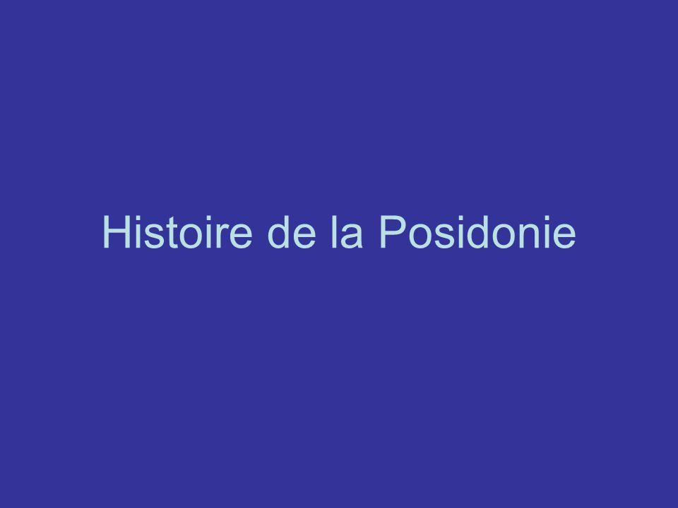 Histoire de la Posidonie
