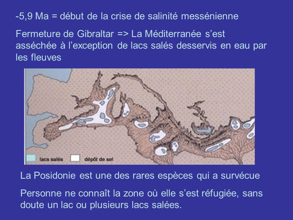 5,9 Ma = début de la crise de salinité messénienne