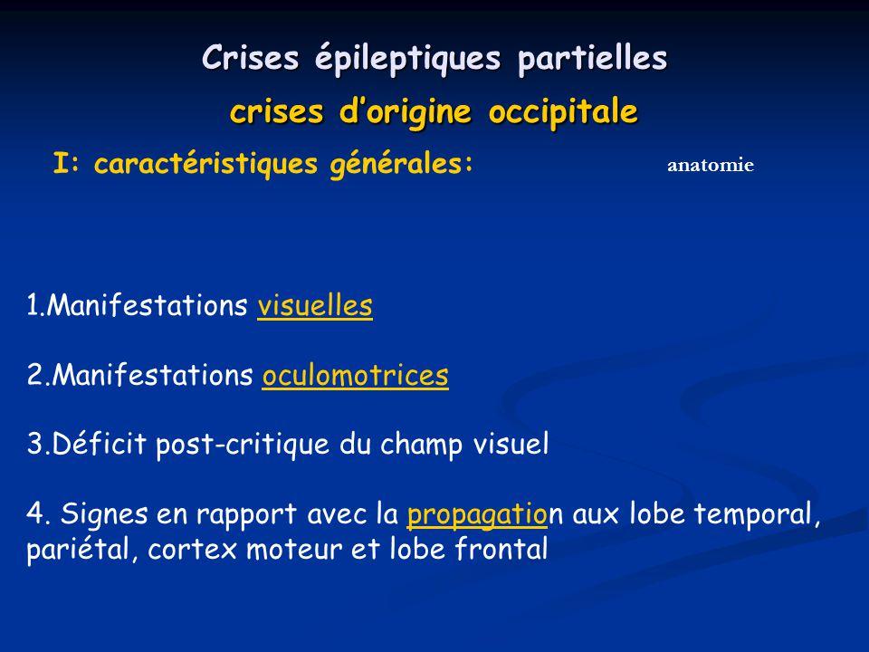 Crises épileptiques partielles crises d'origine occipitale