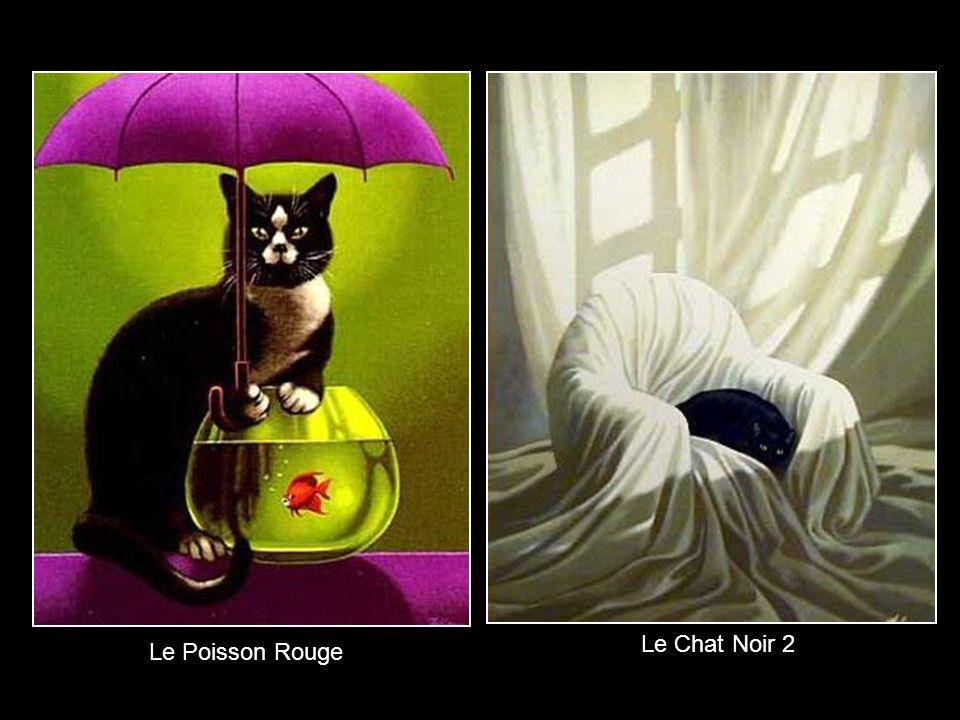 Le Chat Noir 2 Le Poisson Rouge