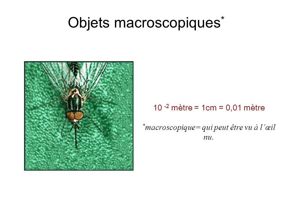Objets macroscopiques*