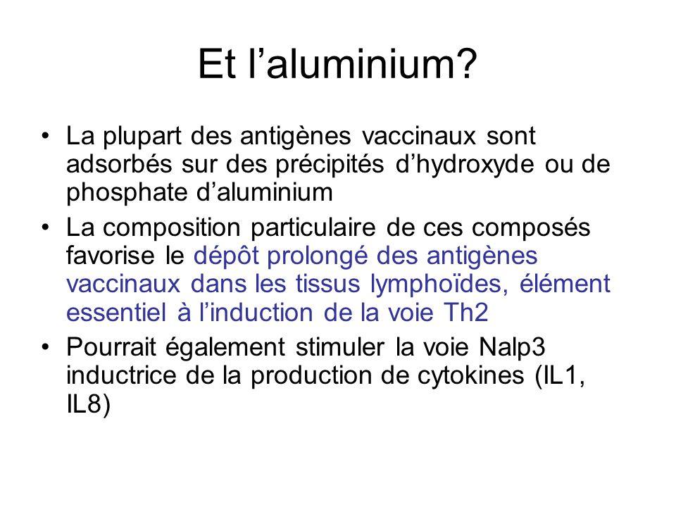 Et l'aluminium La plupart des antigènes vaccinaux sont adsorbés sur des précipités d'hydroxyde ou de phosphate d'aluminium.
