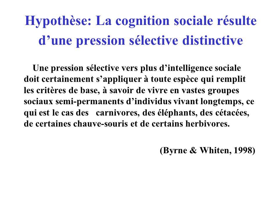 Hypothèse: La cognition sociale résulte d'une pression sélective distinctive