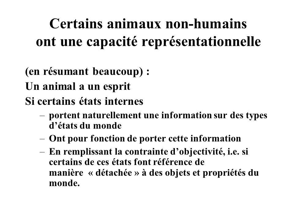 Certains animaux non-humains ont une capacité représentationnelle