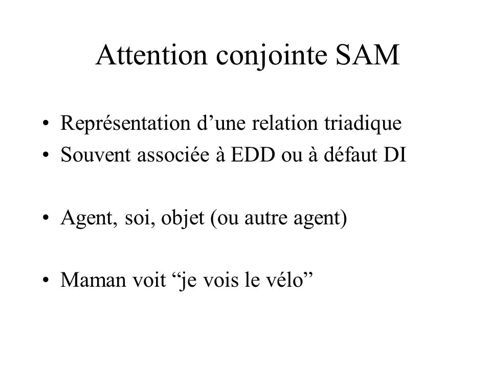 Attention conjointe SAM