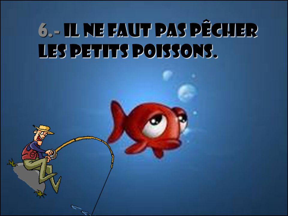 6.- Il ne faut pas pêcher les petits poissons.