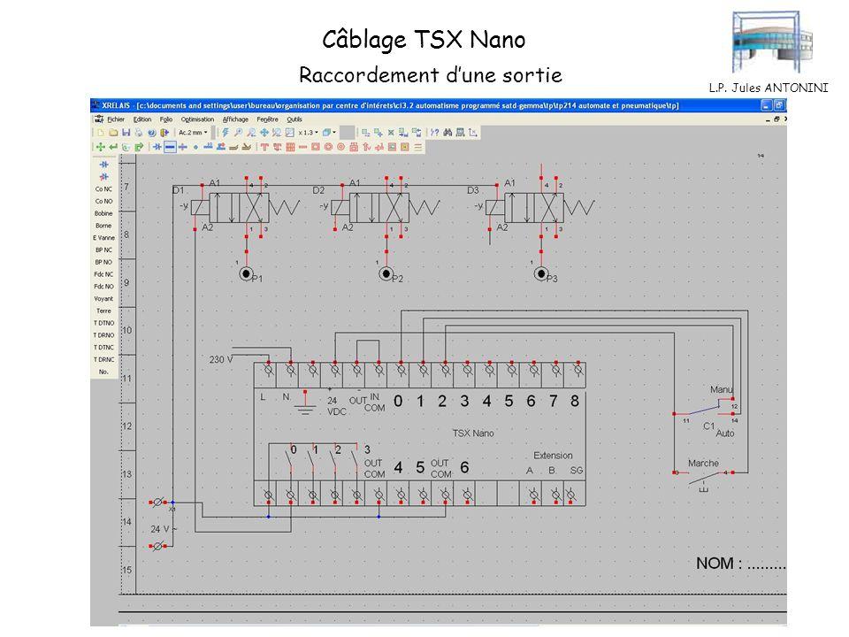 Câblage TSX Nano Raccordement d'une sortie L.P. Jules ANTONINI