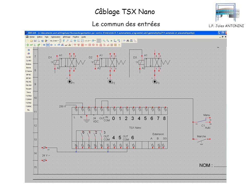 Câblage TSX Nano Le commun des entrées L.P. Jules ANTONINI