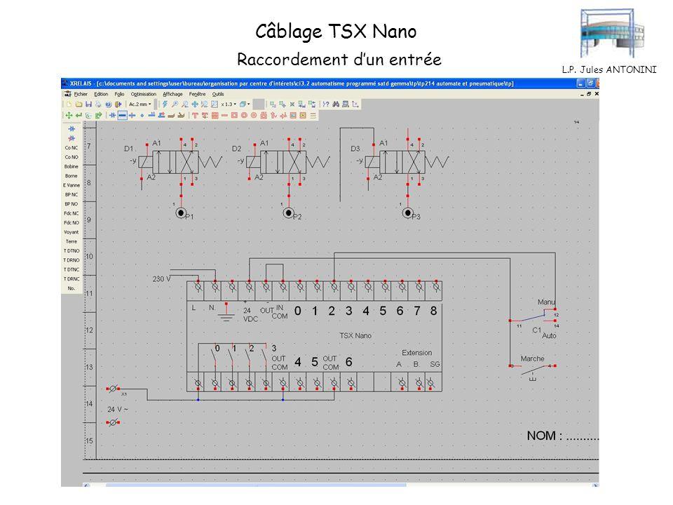 Câblage TSX Nano Raccordement d'un entrée L.P. Jules ANTONINI