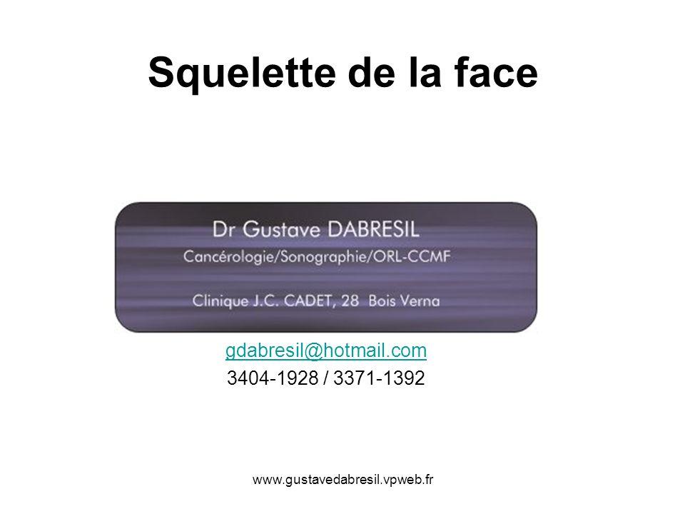 gdabresil@hotmail.com 3404-1928 / 3371-1392
