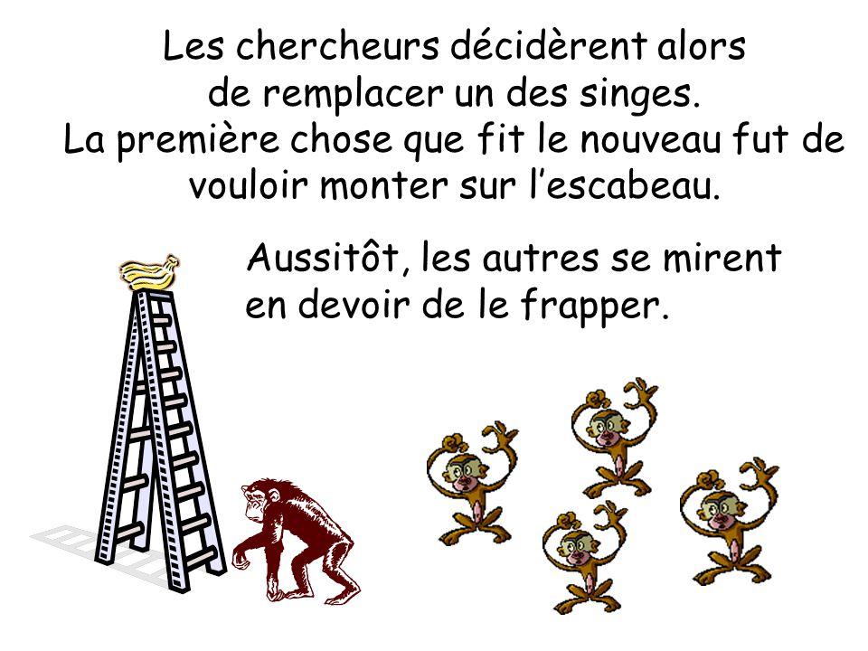 Les chercheurs décidèrent alors de remplacer un des singes