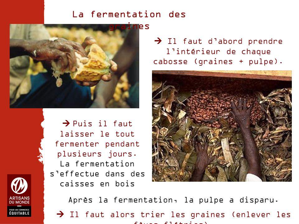 La fermentation des graines