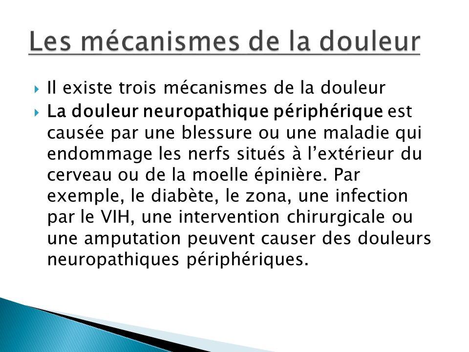 Les mécanismes de la douleur