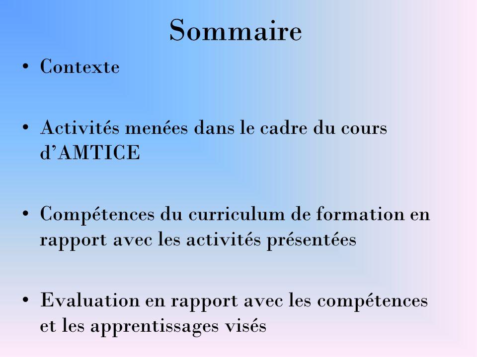 Sommaire Contexte Activités menées dans le cadre du cours d'AMTICE