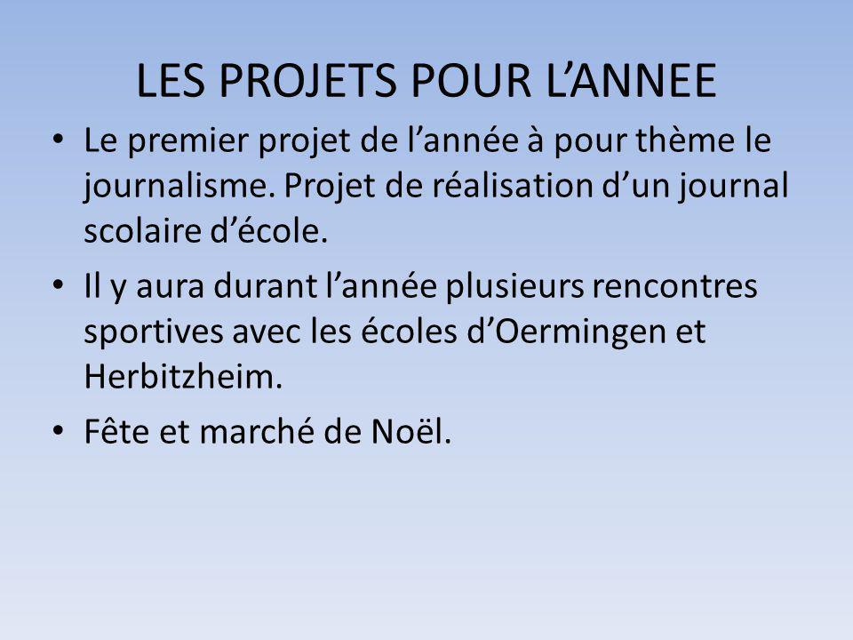 LES PROJETS POUR L'ANNEE
